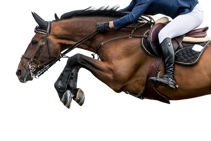 horse front leg and hoof jumping in air